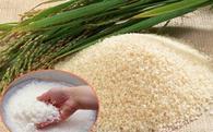 Làm gì để xây dựng thương hiệu gạo Việt Nam?
