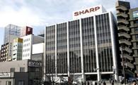 Foxconn hạ mức giá mua lại Sharp xuống chỉ còn 900 triệu USD, từ lời đề nghị 6,2 tỷ USD