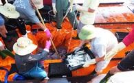 Hải sản đánh bắt cách bờ 20-30 hải lý hoàn toàn an toàn