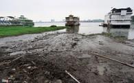 Ven hồ Tây đầy rác, ô nhiễm sau khi di dời du thuyền
