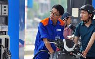 Đã bắt đầu bán hai loại xăng mới trên thị trường