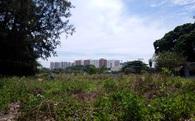 TP.HCM lập quy hoạch chi tiết khu nghĩa trang mới rộng gấp đôi nghĩa trang Bình Hưng Hòa