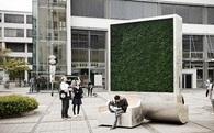 Bức tường rêu nhỏ tí này chính là giải pháp lọc khí mới, hiệu quả bằng gần 300 cây xanh lại di chuyển thoải mái không cần chặt hạ
