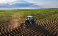 """Trồng rau không cần đất nhưng năng suất cao gấp 130 lần, startup này đang """"đe dọa"""" nông dân khắp thế giới"""