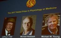 Nghiên cứu đạt giải Nobel khoa học năm nay có thể mở ra cuộc cách mạng thay đổi cách mà chúng ta vẫn ngủ bấy lâu