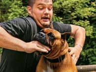 Cựu lính đặc nhiệm SEAL dạy bạn cách để phòng vệ khi bị chó tấn công