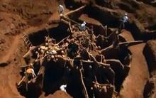 Đổ 10 tấn xi măng xuống tổ kiến dưới lòng đất, nhà khoa học không thể tin vào mắt mình khi khám phá ra thành phố khổng lồ