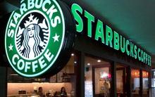 Cuộc chiến chuỗi cà phê: Phúc Long, Starbucks tăng tốc, The Coffee House đột ngột lỗ lớn, Highlands vẫn duy trì thế áp đảo