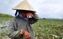 Nông dân than khóc vì dê ốm chết do quy định cách ly, Bộ trưởng Nông nghiệp phân trần: Một con dê, một trại ong chết, so với một gia đình 5-7 người chết, hãy nghĩ cho áp lực của lãnh đạo địa phương!