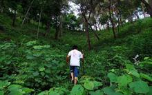 Bồ kết gội đầu, nước trầu súc miệng và chuyện CEO trẻ bỏ phố về rừng, kinh doanh sản phẩm làm đẹp không hóa chất, phụng dưỡng tự nhiên
