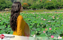 Đến Hang Múa, Ninh Bình ngập trong sắc sen hồng: Trọn vẹn 1 ngày cuối tuần rời xa thành thị xô bồ, chiêm ngưỡng vẻ đẹp thiên nhiên xanh mướt