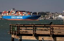 Hiện thực tàn khốc của 'địa ngục' chuỗi cung ứng: Giám đốc logistic van nài 'chỉ cần lấy cho tôi 1 container thôi', chi phí vận chuyển gấp hàng chục lần vẫn cam chịu