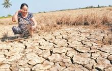 Việt Nam kêu gọi quốc tế hỗ trợ ứng phó hạn hán, xâm nhập mặn
