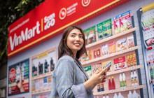 Trước khi được rót 500 triệu USD từ Singapore, mảng bán lẻ của Vingroup đã