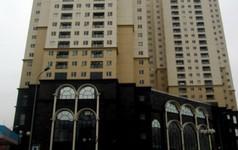 Công bố kết luận thanh tra Viettel dùng tiền nhà nước kinh doanh bất động sản thua lỗ