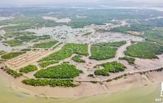Toàn cảnh Dự án Cảng Tổng hợp - Container Cái Mép Hạ vừa bị thu hồi vì chậm triển khai