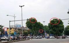 Cận cảnh 'rừng' camera khó dùng phạt nguội tại Hà Nội