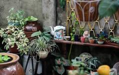 """Ngôi nhà cấp 4 nhỏ hẹp nhưng góc nào cũng rất """"tình"""" của chàng trai 8X ở Sài Gòn"""