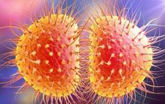Vi khuẩn gây bệnh lậu không thể chữa được đang lây lan tại Trung Quốc