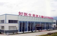 Trang trại Trung Quốc dùng trí tuệ nhân tạo nuôi 6 tỷ con gián mỗi năm