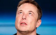 Mải gây chiến trên Twitter, Elon Musk đã để lộ ra rằng công ty đang vi phạm luật lao động của Mỹ