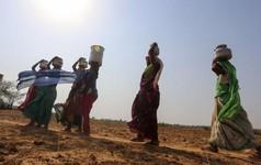Ấn Độ đối mặt khủng hoảng nước tồi tệ nhất lịch sử