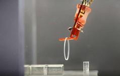 Kỷ nguyên Cyborg đã bắt đầu: Các nhà khoa học Nhật gắn cơ bắp sống lên một ngón tay robot
