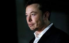 """Cổ phiếu Tesla sụt giảm mạnh sau """"vạ miệng"""" của CEO Elon Musk"""