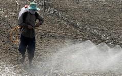 Tai tiếng Monsanto: Hồi chuông cảnh tỉnh cho Việt Nam