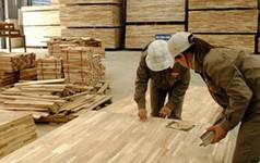 Ngành gỗ Việt Nam: Nhanh nhưng không bằng mọi giá