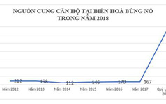 Những dự án hút nhà đầu tư tại thị trường bất động sản Biên Hoà