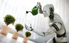 Tại sao tự động hóa lại tốt cho tất cả thế giới?