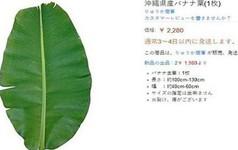 Vì sao người Việt ở Nhật phải mua lá chuối với giá 500.000 đồng/lá?