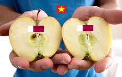 """Không chỉ """"bẻ đôi"""" Qatar, cư dân mạng khắp thế giới cũng đang xôn xao suốt 24h qua vì truyền thuyết """"Ai là người Việt cũng có khả năng bẻ đôi trái táo?"""""""