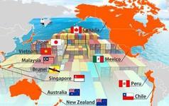 Mừng - lo Hiệp định CPTPP dưới góc nhìn từ Nhà nước, Chính phủ đến doanh nghiệp