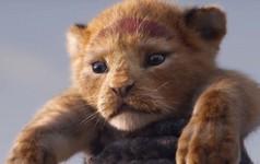 Vượt mặt Infinity War, 'The Lion King' remake trở thành trailer được xem nhiều nhất của Disney trong 24 giờ