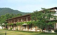 Hà Nội có chỉ đạo mới về việc xử lý vi phạm đất rừng Sóc Sơn
