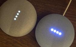 Dùng 2 chiếc Google Home Mini làm bà mối, tôi đã bắt 2 hãng smarthome không ưa nhau phải làm việc với nhau