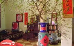 Gợi ý những món đồ trang trí nhà cửa vừa đẹp vừa hợp phong thủy năm con Trâu, giúp gia chủ luôn bình an, mạnh khỏe
