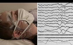 Lần đầu tiên các nhà khoa học giao tiếp được với người đang mơ bằng lời nói và mã Morse