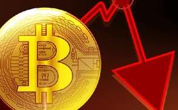 Bitcoin tiếp tục lao dốc, có lúc giá chỉ hơn 45.000 USD