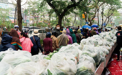 Người Hà Nội đội mưa 'giải cứu' hàng chục tấn nông sản