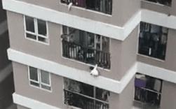 Thót tim clip bé gái 3 tuổi ở Hà Nội trèo ra ban công tầng 12 rồi rơi xuống