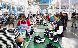 Giải mã nghịch lý NSLĐ: Khu vực FDI được kỳ vọng cao nhưng năng suất lại thấp hơn khu vực nhà nước?