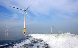 Việt Nam lọt mắt xanh đại gia hàng đầu thế giới về điện gió ngoài khơi nhờ sở hữu điều kiện tự nhiên tốt nhất và phù hợp nhất ĐNÁ