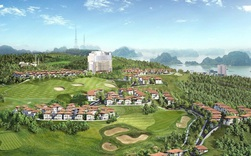 FLC xin dừng nghiên cứu lập quy hoạch siêu dự án hơn 600ha tại Quảng Ninh