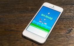 Nguyễn Hà Đông chia sẻ diện mạo mới của Flappy Bird, sắp có bản mới thú vị hơn nhiều?