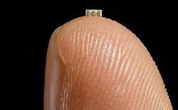 Bloomberg: Trung Quốc đã dùng con chip nhỏ bằng hạt gạo này để hack các công ty Mỹ, có cả Amazon và Apple