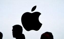 Đố bạn biết vì sao Steve Jobs lại đặt tên công ty của mình là Apple?
