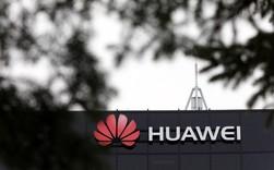 Khủng hoảng mang tầm cỡ toàn cầu của Huawei: Đến lượt nhà mạng lớn nhất Pháp tuyên bố ngưng sử dụng thiết bị của hãng này